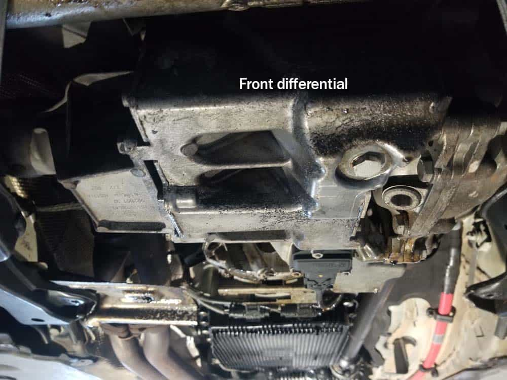 Locate and identify the front differential
